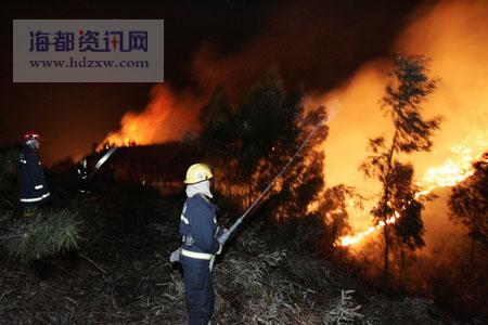 沙县高砂镇发生森林火灾_新闻中心_新浪网