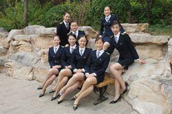 犹如后宫:山木培训集团内部的美女白领上百p