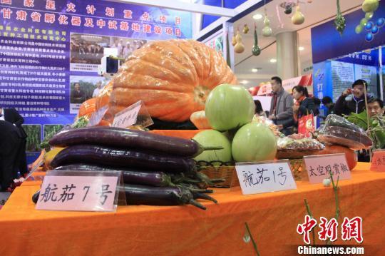 """中国杨凌农高会开幕 农产品贴""""太空""""标签_新浪新闻"""