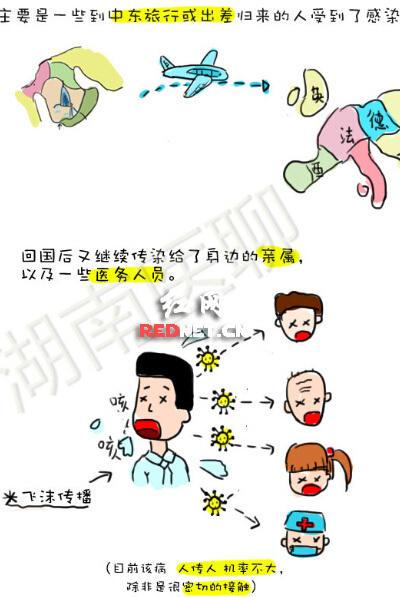 医学生手绘漫画:1分钟看懂mers(图)