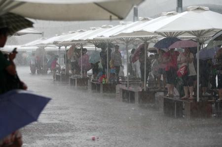 荷兰馆昨闭馆一小时躲避雷暴雨天气