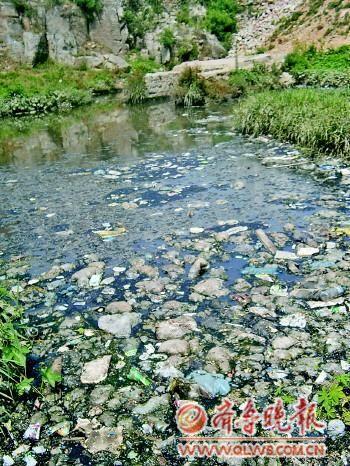 仲北村北头,一家纸盒厂排放的污水汇集成水塘,再沿着狼猫沟排到卧虎山水库。