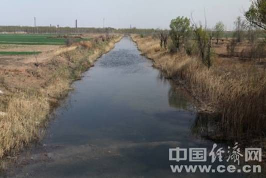 白马沟中满是酸性污水,沟两侧则是村民的农田