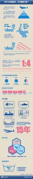 拿什么拯救你 水中国宝江豚