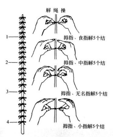 常做手指操刺激经络穴位防健忘