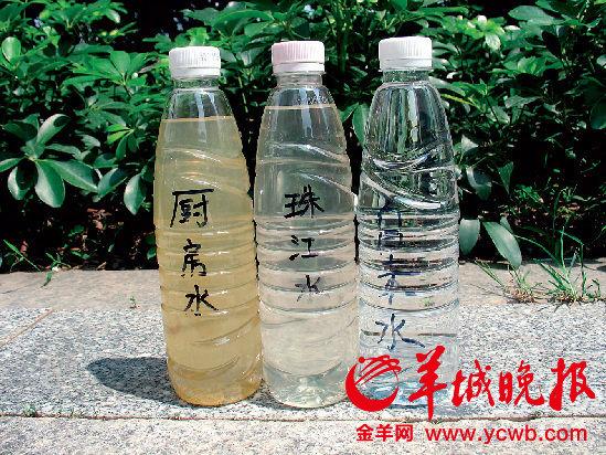 厨房水的浑浊度明显比珠江水浑浊,不过微生物指标比珠江水稍低。周达标/摄