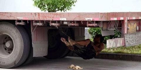 7月30日下午,在安徽黄山休宁县工业园区,驾驶员在车底下用吊床乘凉避暑。(来源:安徽网)