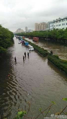 今晨深圳107国道全部被水淹