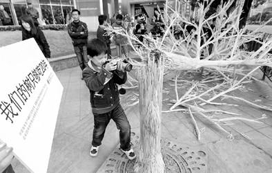 """折断的""""筷子树"""""""