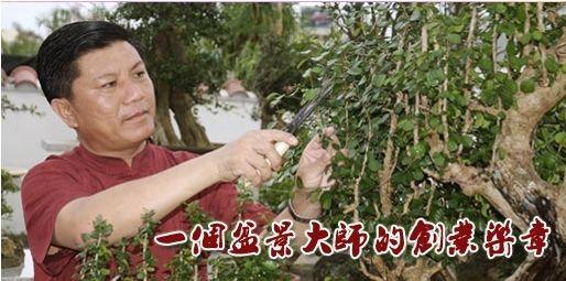 刘传刚:盆景艺术家的创业乐章