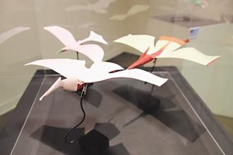 台湾老师懂8千种纸飞机折法 最远掷射50多米_