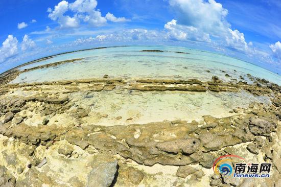 (三沙新闻网记者李庆芳摄)   三沙市银屿岛,海滩上的一根腐木,增添了