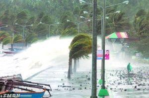 """最强台风""""海燕""""吹惨菲律宾"""