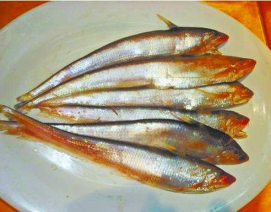 鱼 催生天价 长江刀鱼一斤要8000元