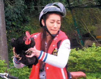 台湾女星林韦君拍戏抓鸡