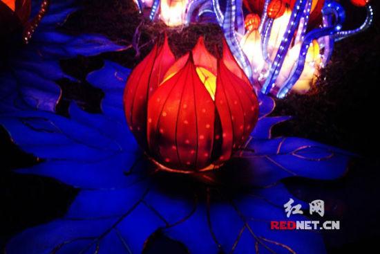 2014梅溪湖国际灯光节暨元宵灯会开幕(组图)
