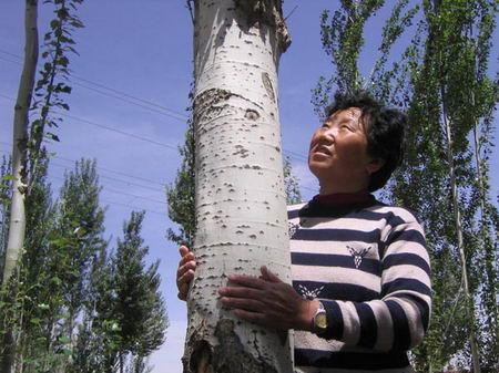 2007感动中国年度人物推荐:白春兰(图)