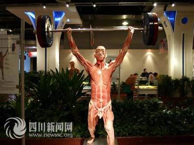 成都展出国内最大完整男人皮(图)