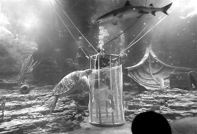 《利箭行动》少女被大尺度捆绑调戏_几名大汉将他装在一个大笼子内,扔进5米深的\
