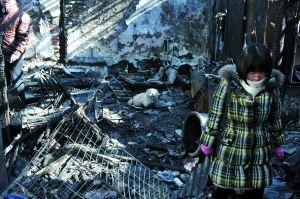 昨天凌晨,什刹海龙头井街,动物保护名人丁世英奶奶家中失火。