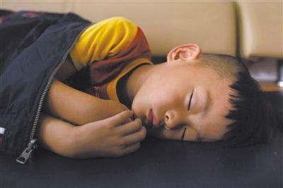 9月6日,等待录制节目的多多躺在沙发上熟睡。新京报记者 侯少卿 摄