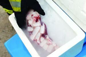 猪肉放入3分钟后取出,被干冰冻住的痕迹非常明显