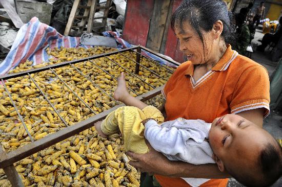 图文:映秀镇渔子溪村村民在查看晾晒的玉米