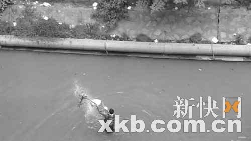 男子将小狗赶到水中并虐待致死(图)