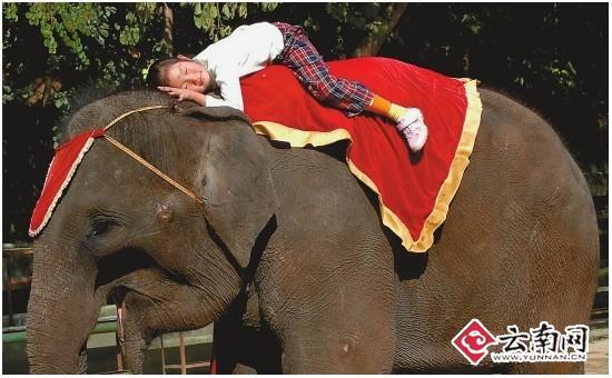 11歲女孩與大象形影不離被稱為象公主(組圖)