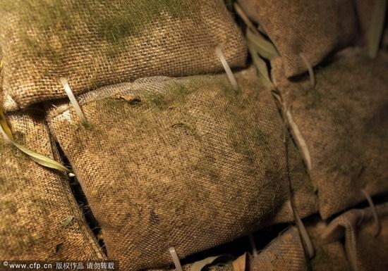 小屋两米来高,外皮用麻袋拼成,看上去有些不起眼。图片来源:新京报 赵亢/CFP