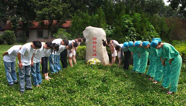 图文:医生与学生们向实验中死亡动物鞠躬行礼