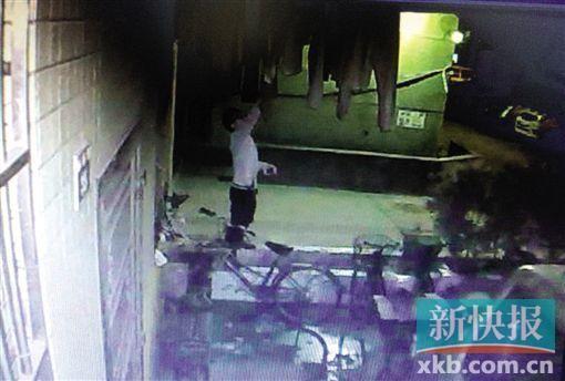 吴小姐安装的监控摄像头拍下窃贼盗窃全过程。 (视频截图)