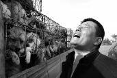 昨日上午,运狗车辆被困,货主一个劲地仰天长叹 华商报记者 闫文青 摄
