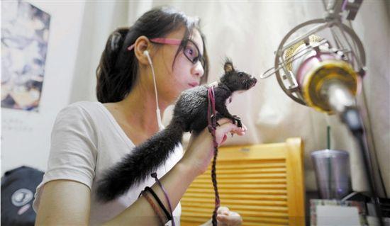 找来一只小松鼠参与直播,也能调动人气,增加气氛,有助互动。