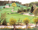 英格兰村庄牧场2008