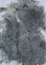 鸿雁长鸣48x67-1987年