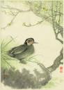 陈佩秋-野鸭图