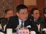 上海国际集团副总裁杨德红