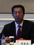 安徽海螺集团副总经理齐立生