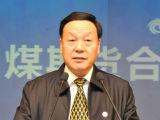山西省煤炭工业协会理事长王守祯