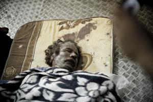 金奖:卡扎菲身亡