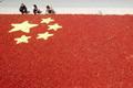 山东农民用红辣椒和玉米拼成国旗