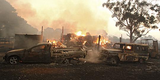 澳大利亚官方称已有76人在山林大火中丧生