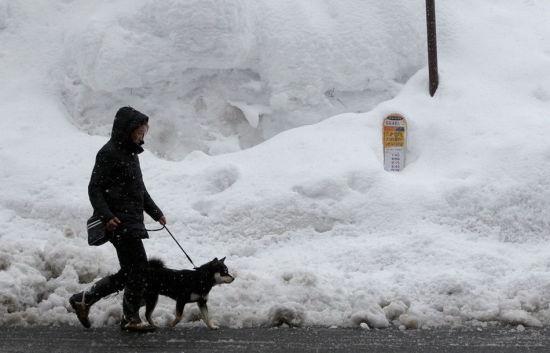 日本路边积雪严重