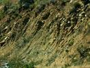美国洛杉矶地震