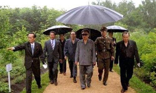 看过给领导打伞的,见过给上级递手纸的吗?