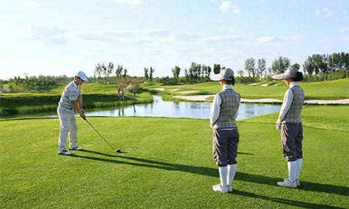 2013年,全国高尔夫球场数量多达到521家。