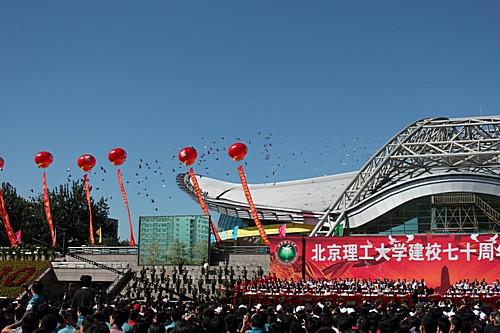 美丽的北京理工大学校园处处勃勃生机,喜气洋洋.