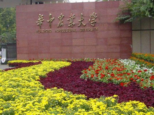 千里走高校 华中农业大学校园文化及招生特色图片