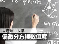 大连理工大学:吴微教授偏微分方程数值解